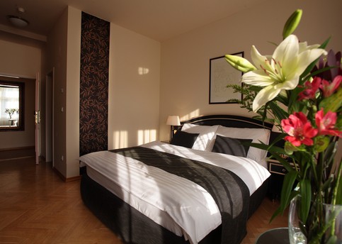 Main elysee classic room for 2 people 01