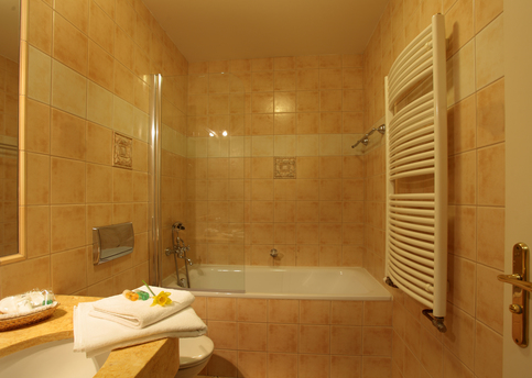 Main elysee classic room bathroom